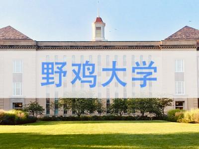 【方法】:如何辨别国外野鸡的大学?